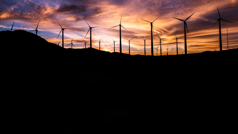 Amplify_BBC_Sustainability